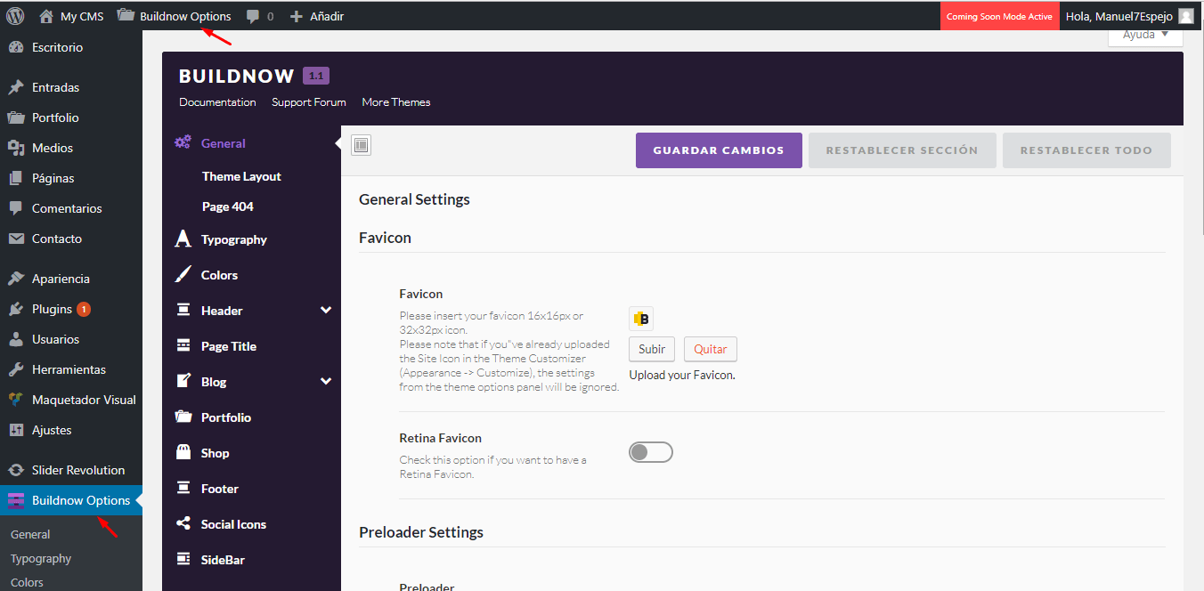 tutorial wordpress theme options